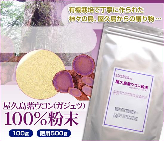 屋久島紫ウコン100%粉末(ガジュツ)