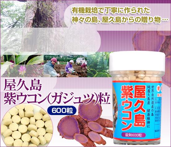 屋久島紫ウコン粒(ガジュツ)